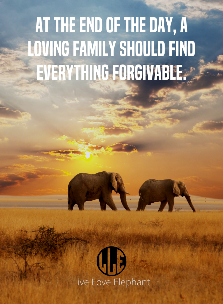 LLE - At the end of the day, a loving family should find everything forgivable.
